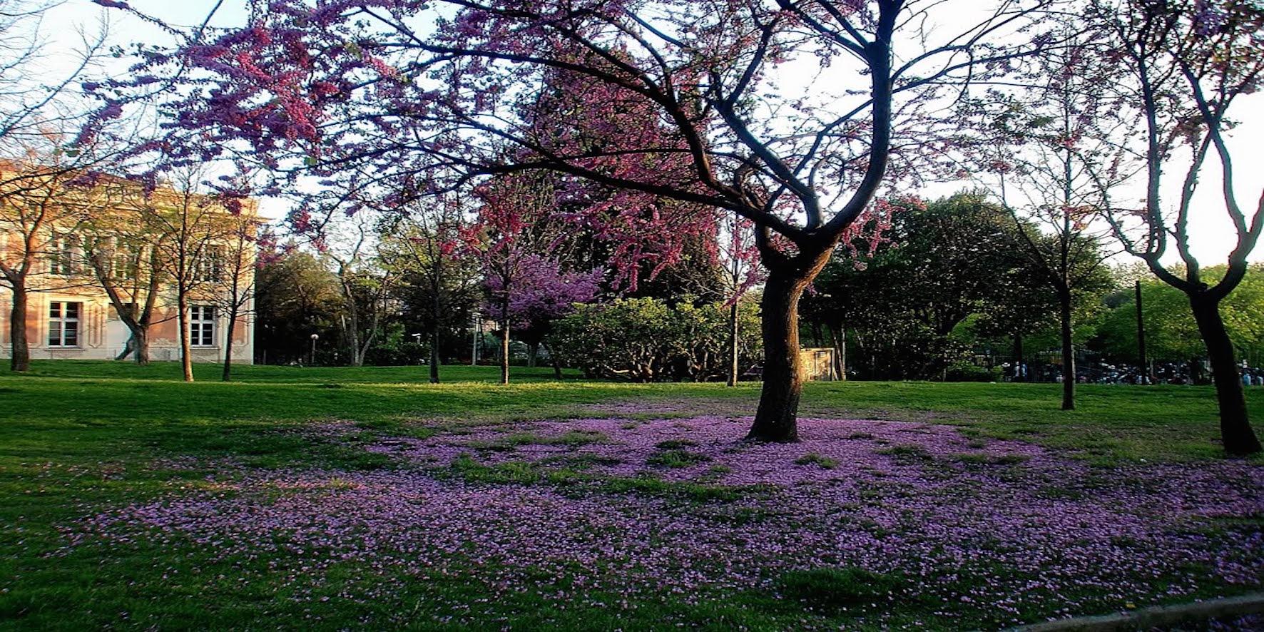 14 parques y jardines en barcelona para hacer senderismo for Parques y jardines